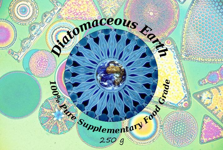 Diatomaceous Earth Fleas Carpet
